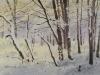 Зимний этюд. 2005г. 45Х65