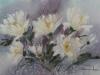 Хризантемы 2015г., акварель на бумаге, 35Х50