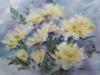 Желтые хризантемы. 2009г. 45Х60